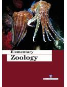 Elementary Zoology